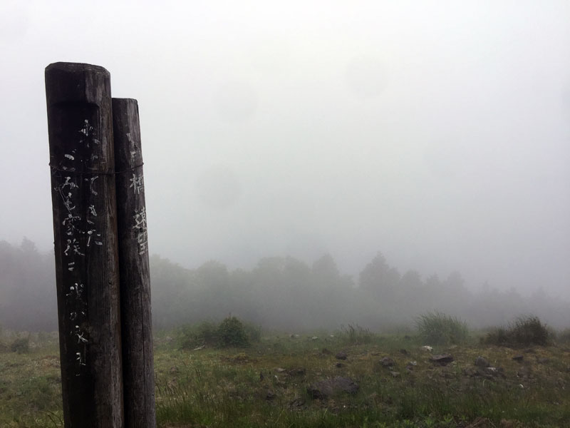 霧雨の剣山スーパー林道
