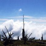 正木峠の風景