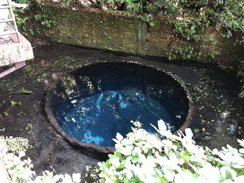 展望台からの湧水